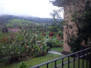 24 Arenal Kioro View